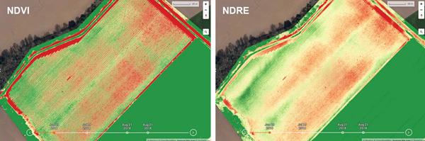Sentera FieldAgent mezőgazdasági küldetéstervező és kiértékelő szoftver (1 éves előfizetés) 3